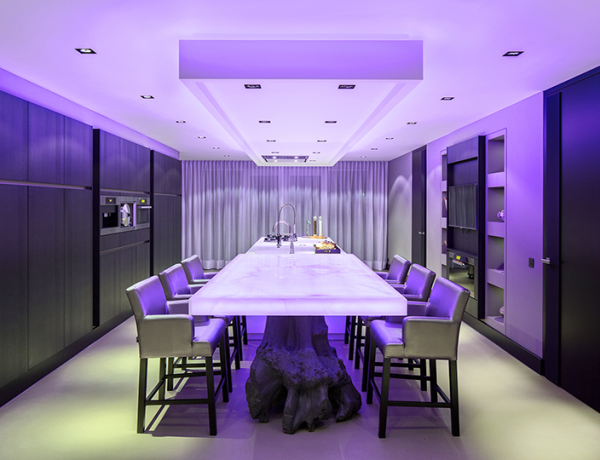 Eye-catching Modern Dining Room Decor in Purple